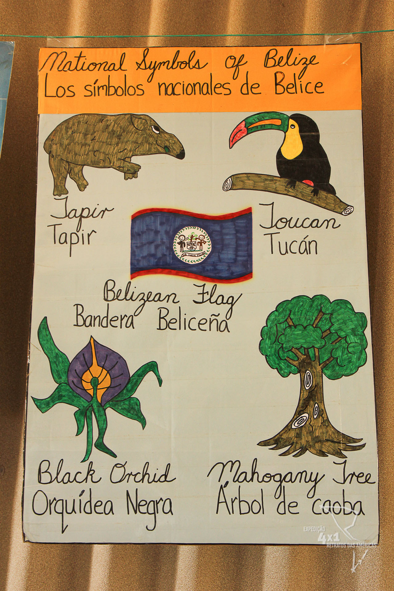 Africans to the caribbean and dwelt about when we return to school a comic hanging in the room helps students memorize the national symbols of belize and you know what are the official symbols of brazil biocorpaavc Image collections